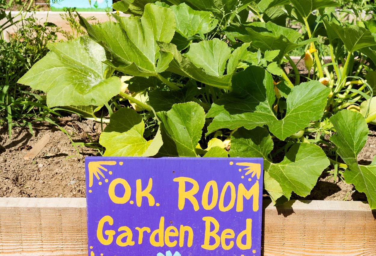 O.K. Room Garden Bed